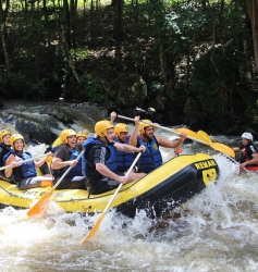 Rafting 40€