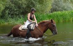 Ruta a caballo 20€