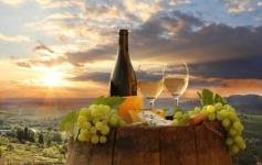 Visita a bodegas y cata de vinos 30€
