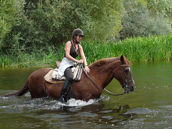 Ruta a caballo.Despedida de soltero y soltera Salamanca. Eventura