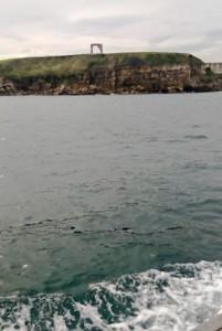 Eventura-Despedidas-soltero-en-Gijón-Asturias-actividades-agua-paseos-barco-gijon-8