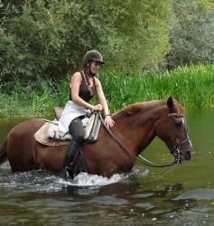 Ruta a caballo 22€